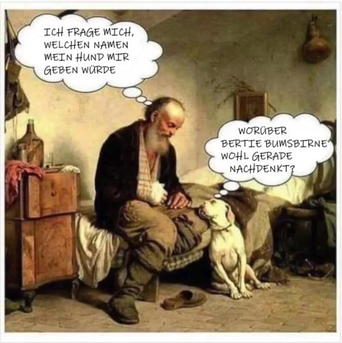 hundss